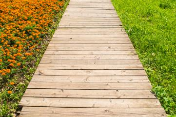 wooden-road-grass-flowers-old-perspective-green-one-side-orange-marigolds-other-side-32911947